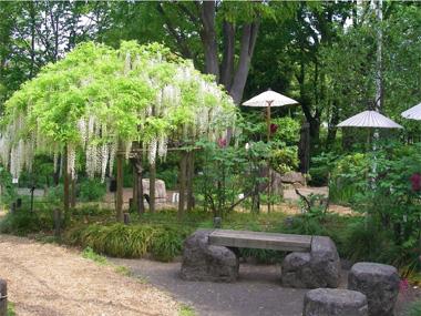 多様な樹木の維持管理